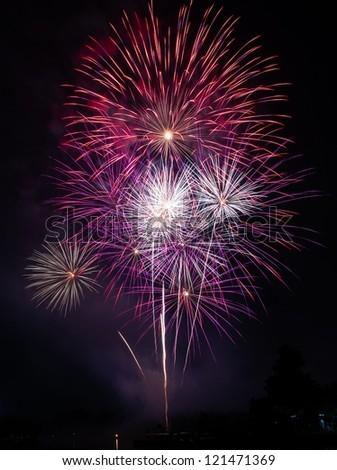 Colorful fireworks over dark sky, displayed during a celebration