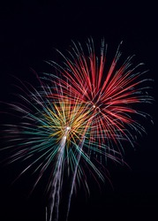 Colorful fireworks paint the night sky.