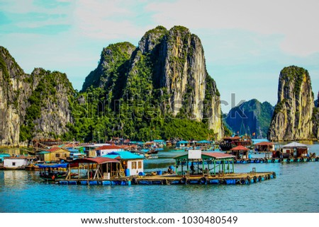 Colorful Floating Village in the Sea beneath the Limestone Cliffs of Halong Bay, Vietnam