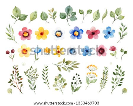 Colorful floral collection with multicolored flowers,leaves,branches,berries and more. Set with 40 watercolor elements.Perfect for wedding,invitations,greeting,quotes,patterns,bouquets,logos,Birthday.
