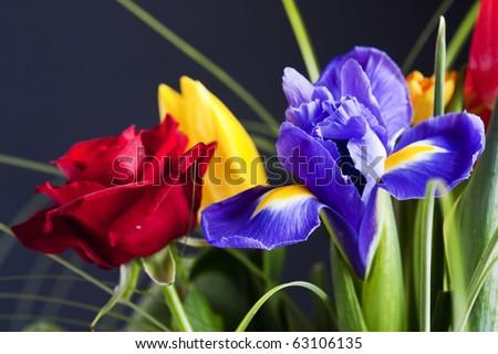 colorful flower bouquet - stock photo
