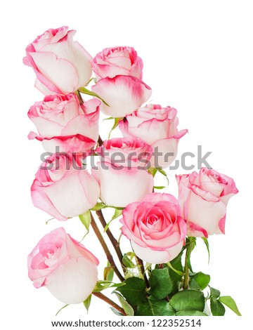 colorful flower bouquet from roses isolated on white background