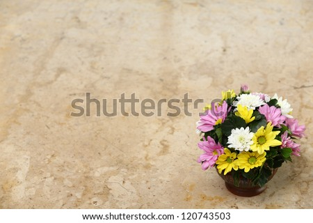 Colorful flower on marble table