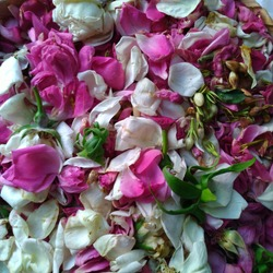 colorful flower packages consisting of roses, jasmine, kantil, and others for the background