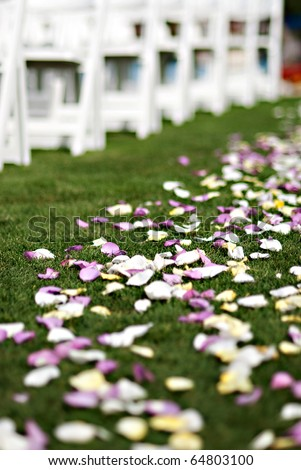 Colorful flower petals are thrown down the aisle during a traditional american wedding ceremony