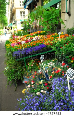 Colorful flower stand on a sidewalk in Paris, France.