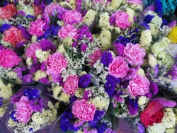Colorful flowers at the flower market in Bangkok