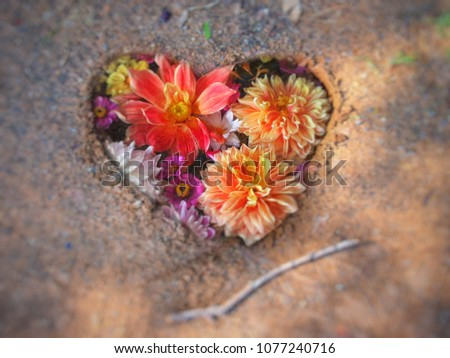 Colorful flowers in heart shape hand drawing on earth, blur background #1077240716