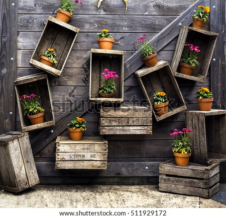 Colorful Flowers in pots in wooden boxes shelves on a wooden background  #511929172