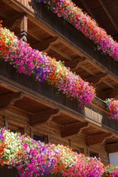 colorful flowers on balconies of timber chalet in the Alps in Alpbach Tirol Austria