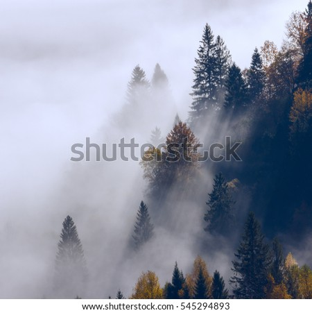 colorful foggy autumn Thailand mountains landscape, location east Asia mountains, Thailand morning sunrise, beauty world #545294893