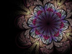 Colorful fractal flower