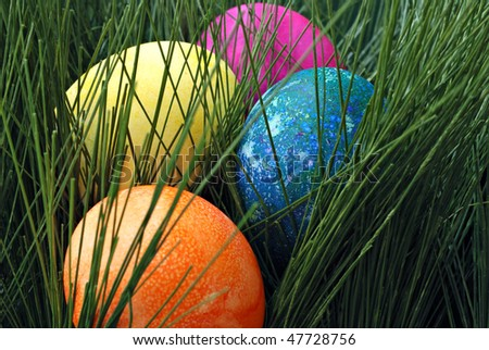 Colorful freshly dyed easter eggs hiding in green grass.  Macro with shallow dof.  Focus on blue egg.
