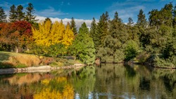 Colorful garden in the city of Davis, California, in the Autumn overseeing a lake on a partly cloudy day, with water reflections