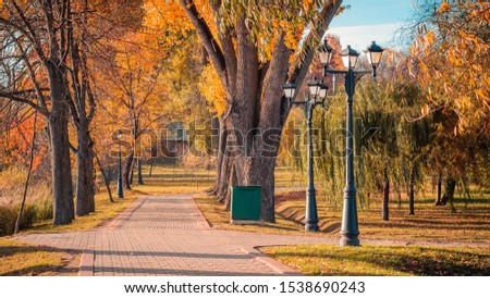 colorful golden autumn. tiled walk alley in an autumn city landscaped public park with vibrant orange-yellow foliage, large trees, street lamps, a trash can and nice weather on a nice day