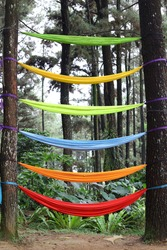 Colorful hanging fabric rope hammocks in the pine forest
