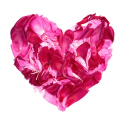 Colorful heart of Pink and crimson petals of peony flowers lying on white background. Decorative element for Valentines Day, Mothers Day, Birthday or wedding. Flat lay