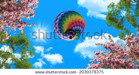 Colorful hot air balloon in the blue sky. green tree branches and pink spring flowers. bottom view stretch ceiling sky picture.