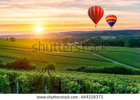 Colorful hot air balloons flying over champagne Vineyards at sunset montagne de Reims, France - Shutterstock ID 664328371