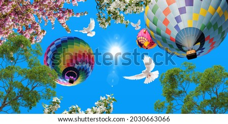 Colorful hot air balloons in the blue sky. green tree branches and pink spring flowers. flying white doves. bottom view stretch ceiling sky picture.