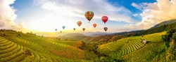 Colorful Hot Air Balloons.  Sunset scene of Pa Bong Piang terraced rice fields, Mae Chaem, Chiang Mai Thailand