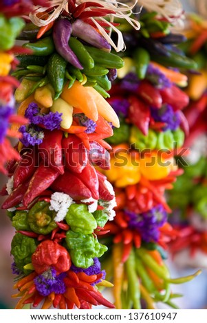 colorful hot chilli peppers