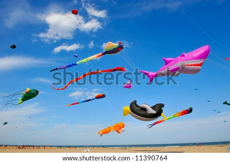 colorful kites flying in the sky during a festival