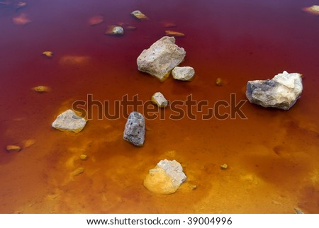 Colorful lake shore showing red and yellow strong tones
