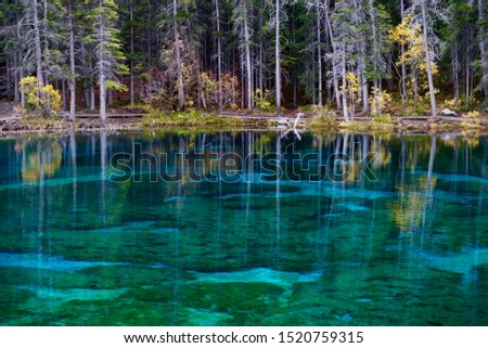 Colorful lake with autumn forest and reflections in Canadian Rockies. Grassi lakes near Canmore in  Rocky Mountains. Alberta. Canada #1520759315