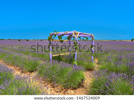 Colorful landscape of a lavender field with a public set to take selfies pictures during july lavender festival near the medieval town of Brihuega, Guadalajara, Alcarria, Castilla la Mancha, Spain.