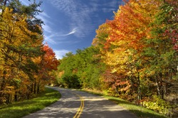 Colorful leaves on Foothills Parkway West in the Great Smoky Mountains National Park in late October.