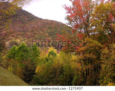 Colorful mountainside