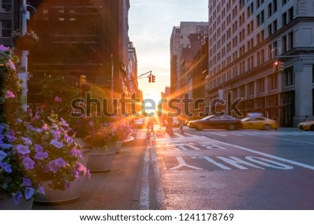 Colorful New York City street scene with flowers and sunset stock photo
