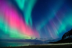 colorful northern light aurora borealis with purple, red, green and blu flames over the sky in iceland  in a beach in