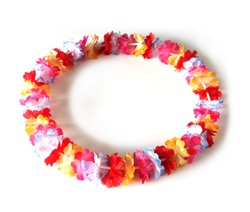 Colorful of a circle of lei flowers, isolated on white background