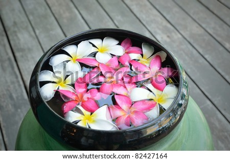 colorful of plumeria or frangipany flower floating in the bowl