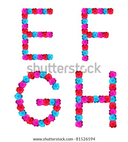 h alphabet in rose  colorful of rose alphabet