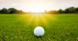 Colorful of White Golf ball on Green field golf course in morning time with soft sunlight.