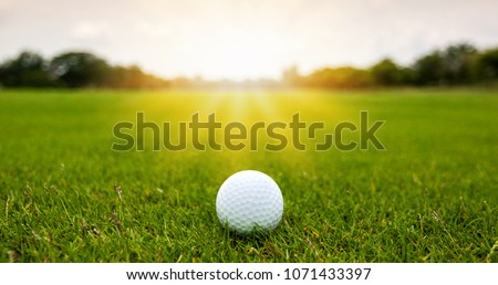 Colorful of White Golf ball on Green field golf course in morning time with soft sunlight. #1071433397