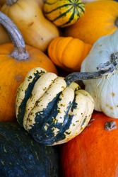 Colorful orange, yellow and white pumpkin squashes and gourds at a farmers market in winter