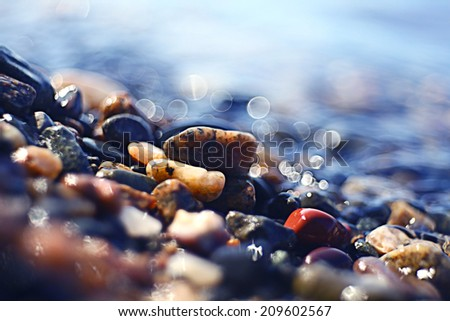 colorful pebbles pebbles on the beach #209602567