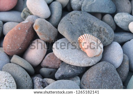 Colorful pebbles top view. Colorful pebbles. Colorful pebbles background. Colorful pebbles view #1265182141