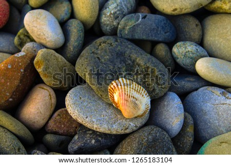 Colorful pebbles top view. Colorful pebbles. Colorful pebbles background. Colorful pebbles view #1265183104