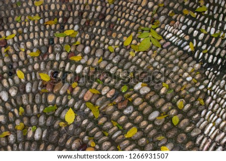 Colorful pebbles top view. Colorful pebbles. Colorful pebbles background. Colorful pebbles view