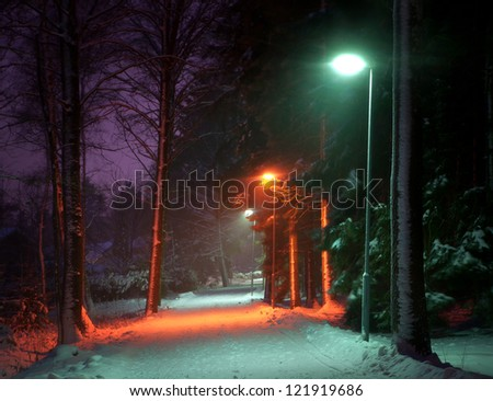 Colorful pedestrian walking path with lamps in winter at night