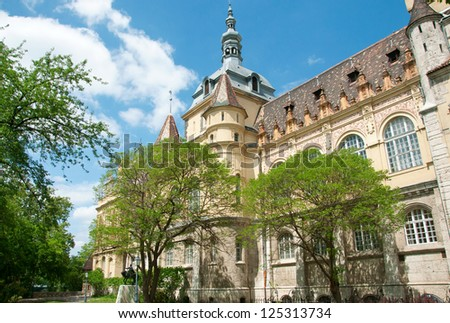 Colorful photography of view on Royal agriculture museum settled within Vajdahunyad castle on a bright sunny spring day with some green trees in front and against blue sky. Budapest, Hungary
