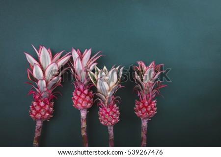 Colorful  pink pineapple on green background  #539267476