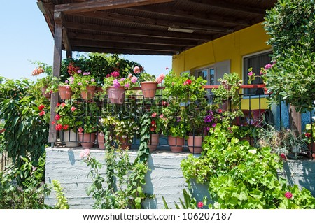 Colorful plants and flowers outside a house - stock photo