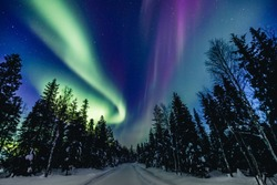 Colorful polar arctic Northern lights Aurora Borealis activity in snow winter forest in Finland, Lapland