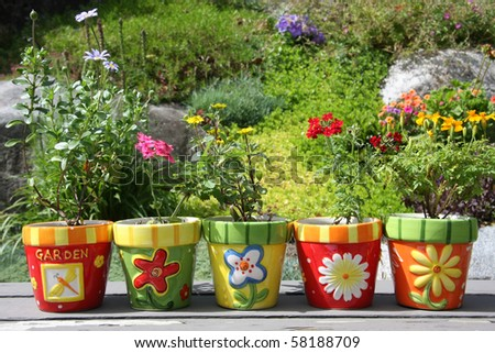 Colorful pots with pretty flowers, outside in the garden. #58188709
